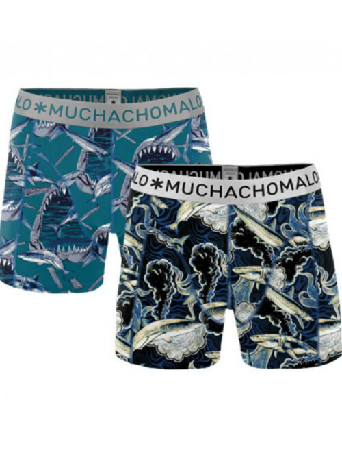 Muchachomalo Tights 1010SHARKX04