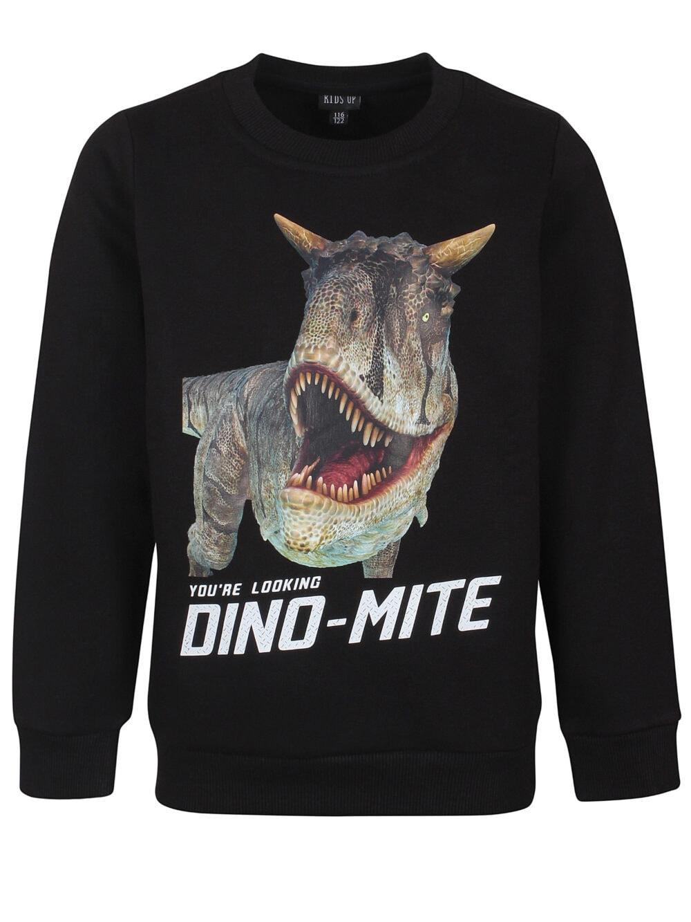 Kids Up Sweatshirt DINO-MITE Sort